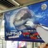 久しぶりに見入った電車の中吊り広告~紙がサメに食いちぎられてる?